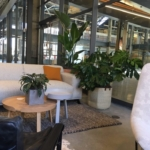 Biophilic Office Design - H.W. Holmes, Inc. LA area Office Tenant Improvement